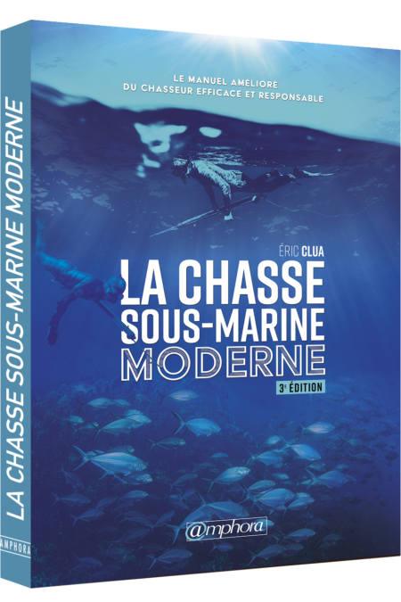 Chasse ous-marine 3d
